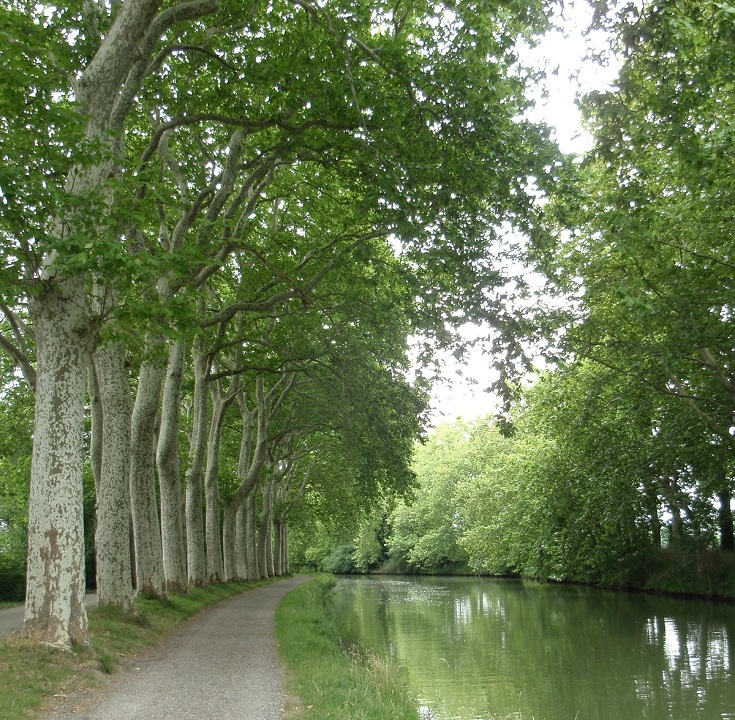Between Écluse de Castanet and Écluse de Vic, Midi Canal, France