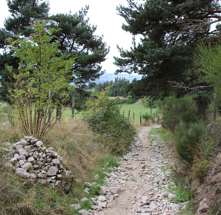 Between Montaure and Saugues, GR65, France