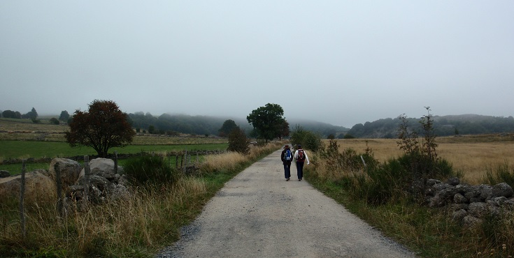 Between Nasbinals and Aubrac, GR 65, Chemin de Saint-Jacques, Walking in France