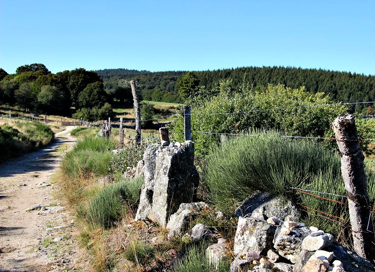 Between Villeret-d'Apchier and le Sauvage, GR 65, France