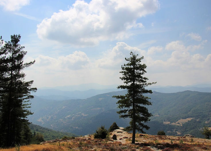 Views out onto a forested ridge in the Cévennes National Park