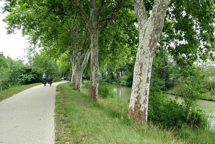 Cyclists approaching Pont de Donneville, Canal walks in France