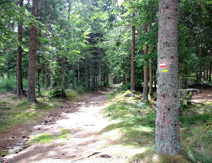 GR 70 Chemin de Stevenson near Fouzilhac
