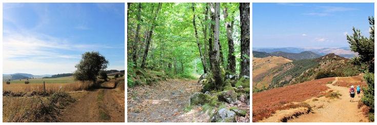 Chemin de Stevenson walking path through farmland, forest and high ridges