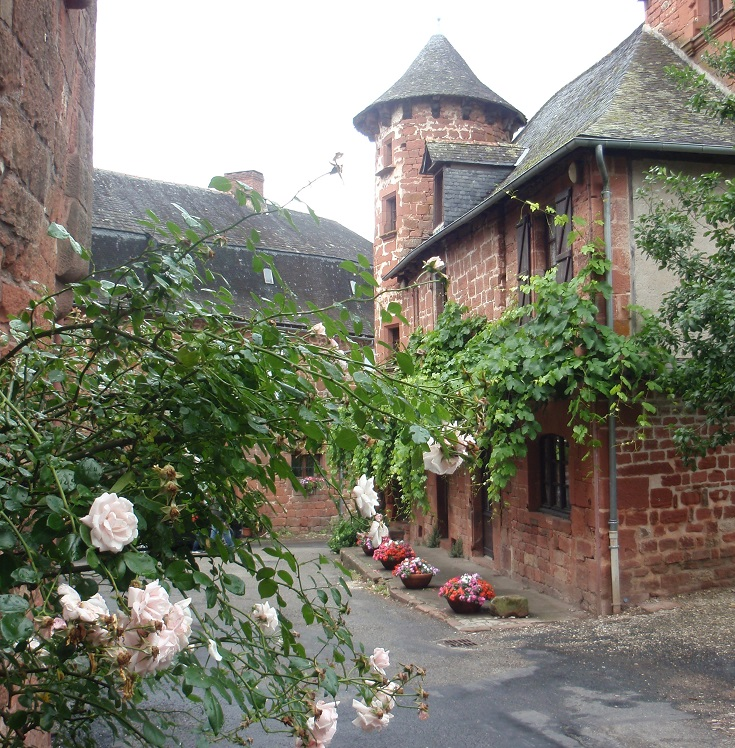 Pink roses, red bricks, Collonges-la-Rouge, GR480, France